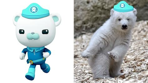 The Octonauts Characters In Real Life | All Characters