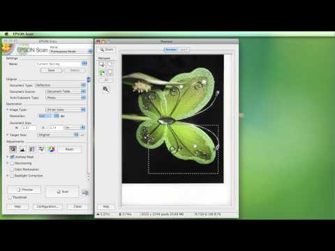 Epson XP 240, Scanner Driver Download - YouTube