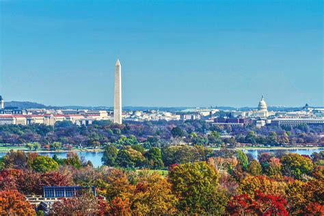 10 Things to Buy in Washington, D